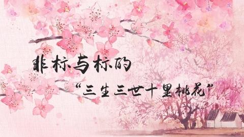 """非标与标的""""三生三世十里桃花"""""""